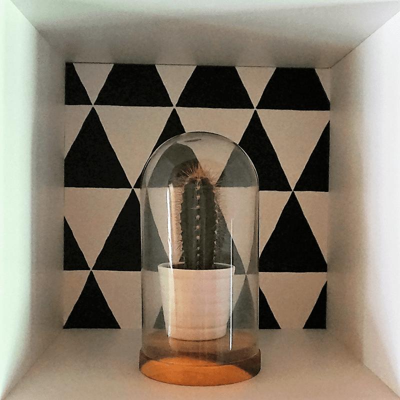 cactus onder stolp geometrisch